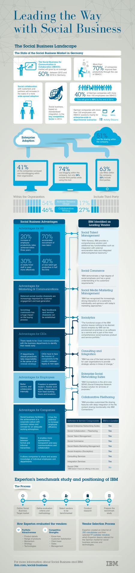 IBM_Social_Business_Experton_Benchmark_Infographic_English